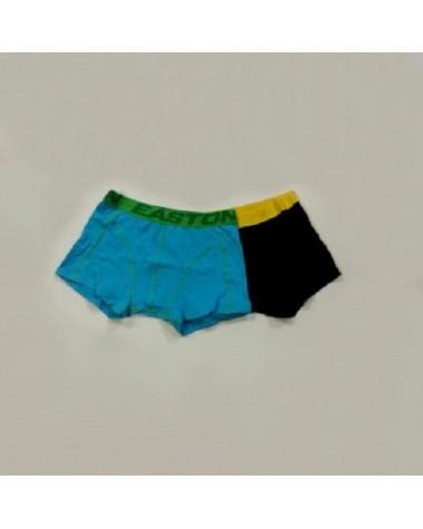 """boxerky EASTON/LOGO BRIEF underwear SR """"2-balenie"""""""